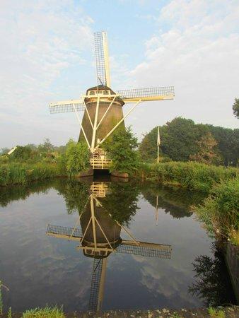 Novotel Amsterdam City: riekermolen in amstelpark