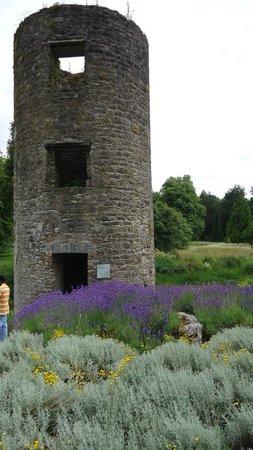 Blarney Stone: Outside the castle