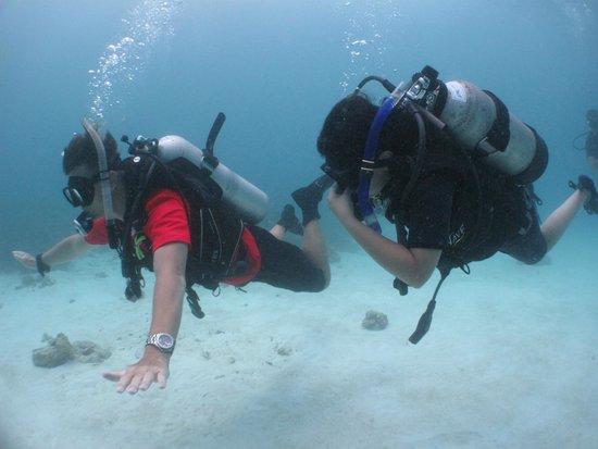 Scuba Cat Diving - Soi Watanna Shop and Classrooms: Daughter OW