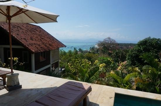 Villa Bagus: The view from the pool