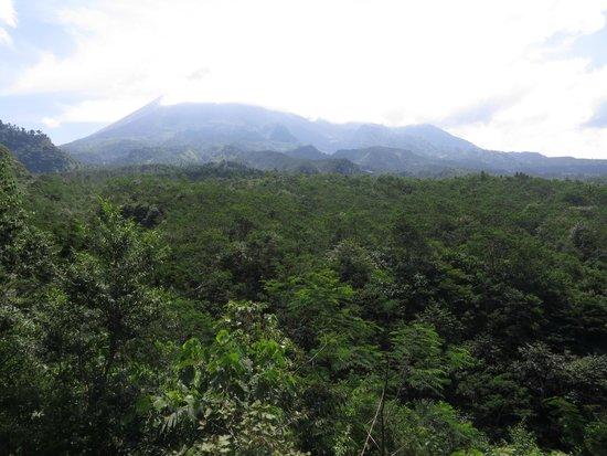 Merapi Volcano: Gunung Merapi