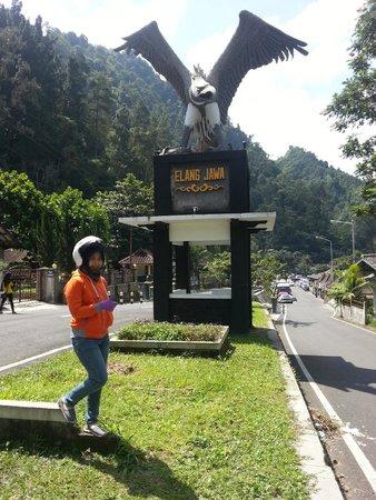 Merapi Volcano: Patung Elang Jawa
