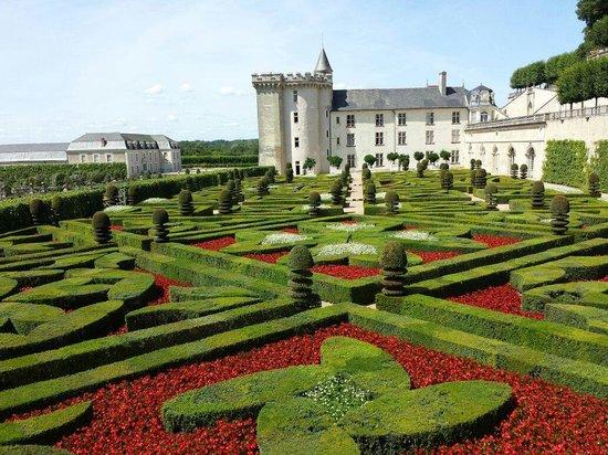 le jardin et le potager picture of chateau de villandry. Black Bedroom Furniture Sets. Home Design Ideas