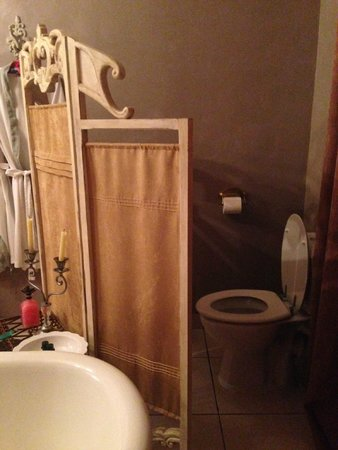 Lokanga Boutique Hotel: Toilet in room. Was fine for us but closed bathroom on hotel main floor if one needs more privac