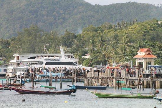 Asia Divers Resort : le port