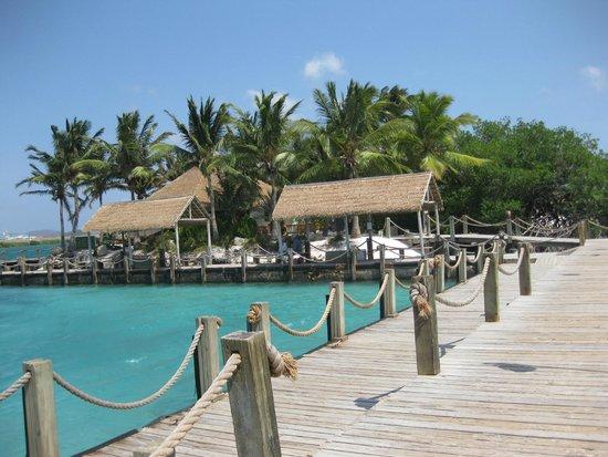 Renaissance Aruba Resort & Casino: Own private beach area.