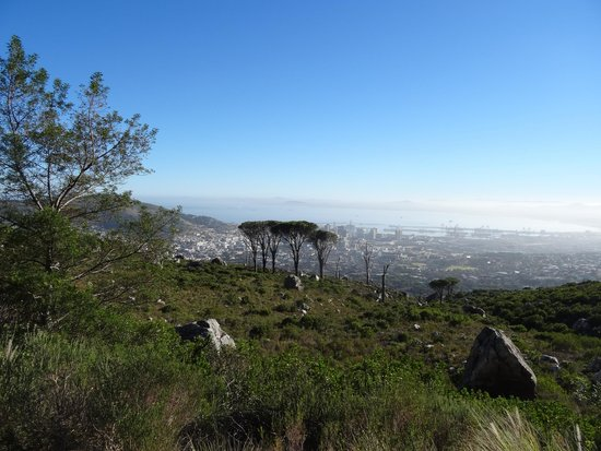 Table Mountain: Half way view
