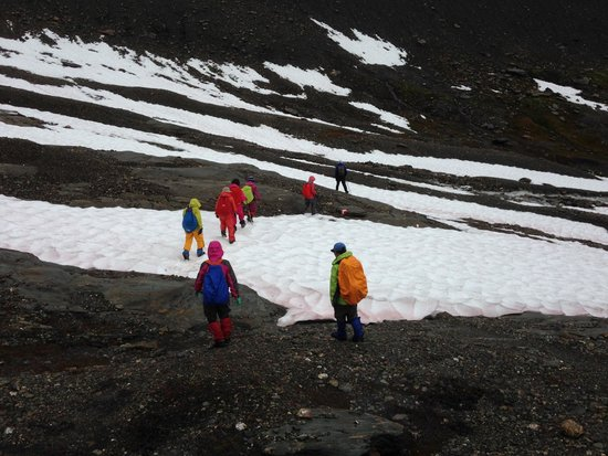 Selkirk Mountain Experience Lodge: Durrand Glacier: playing in the glacier