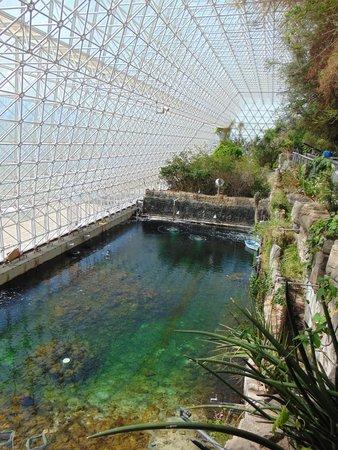 Biosphere 2: ocean