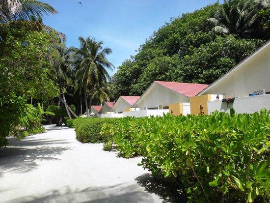 Holiday Inn Resort Kandooma Maldives : Walkway to the rooms