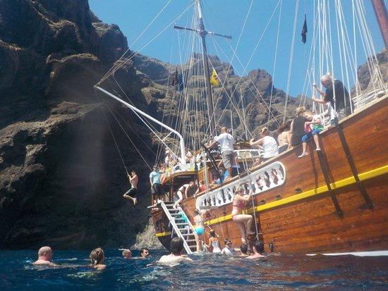 Excursiones de avistamiento de ballenas Flipper Uno: swing'n'swim