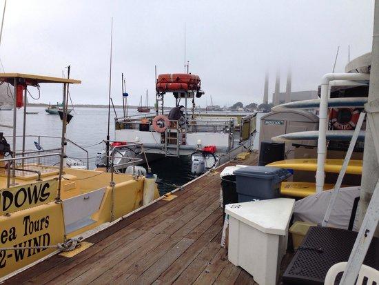 Sub Sea Tours and Kayaks: La barchetta