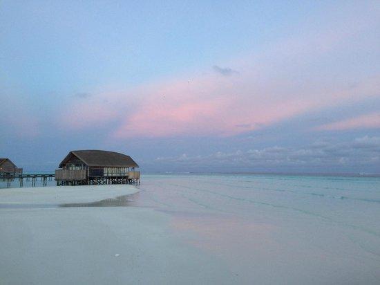 Cocoa Island by COMO: Cocoa Island Sunset