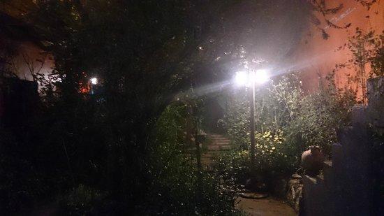Casa Panqarani: Like a secret garden