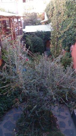 Casa Panqarani: Such a private garden