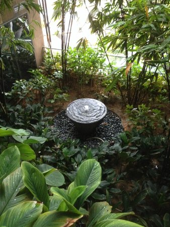 Crowne Plaza Changi Airport: Water feature