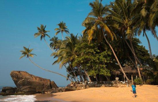Sri Gemunu Beach Resort: Droit devant l'hotel