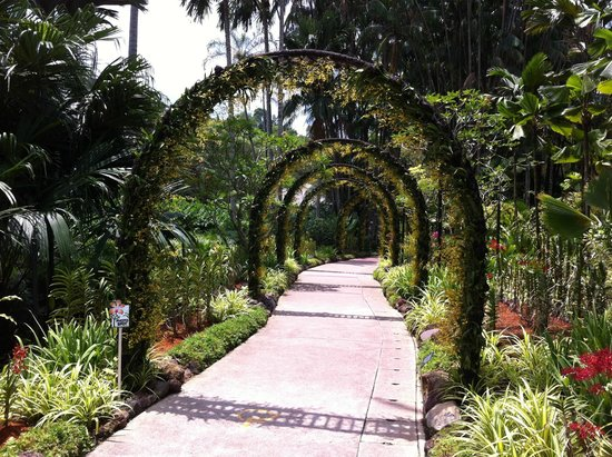 Botanic gardens singapore photo de jardin botanique de for Au jardin les amis singapore botanic gardens