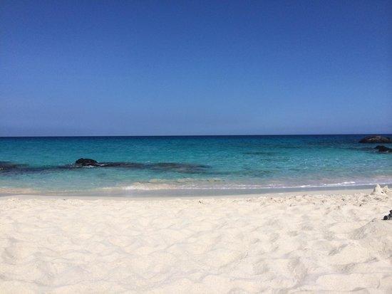 Manini'owali Beach (Kua Bay) : Center rock area where turtles often visit.