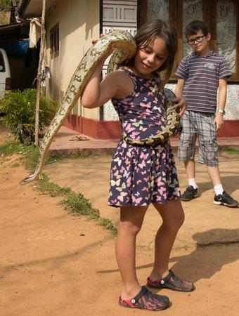 Sri Gemunu Beach Resort : python