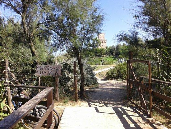 Area Marina Protetta Torre del Cerrano: Ingresso giardino mediterraneo Torre del Cerrano