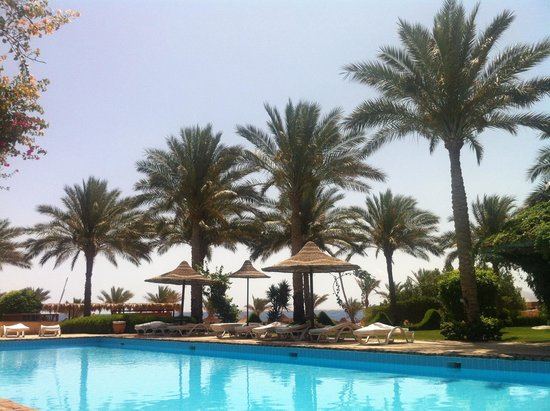 Tamra Beach: Pool view
