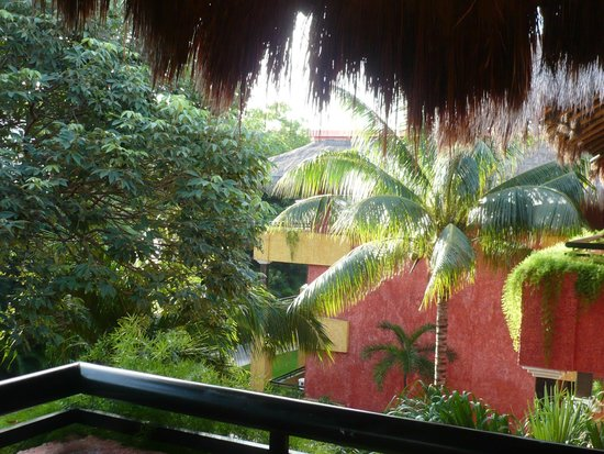 Iberostar Quetzal Playacar: tropical trees by the balcony