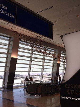 La Quinta Inn Las Vegas Nellis: Flying in :)