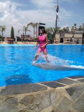 Mundomar : Dolphin show