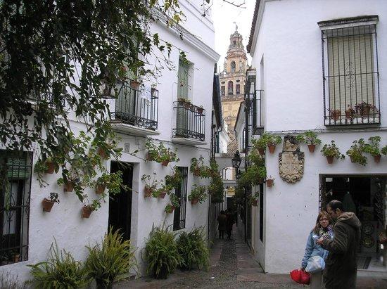Calleja de las Flores: Plaza de las Flores