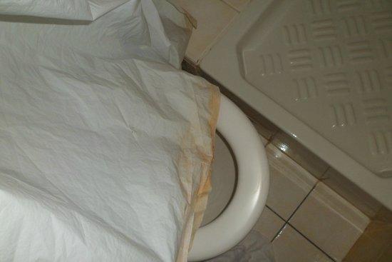 Anis Hotel: Rideau de la douche