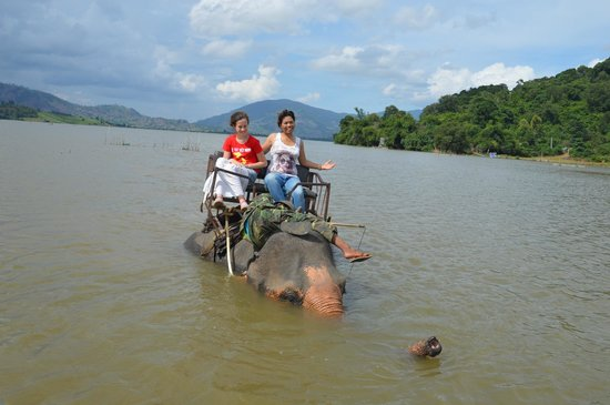 Asiana Travel Mate - Private Day Tours: Lak Lake and trip elephant with guide