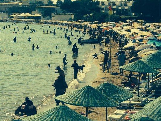 Tuntas Beach Hotel Altinkum: Crowded beach