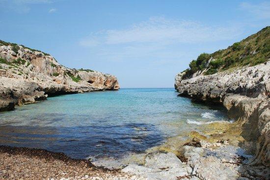 Son Josep De Baix : Nearby beach