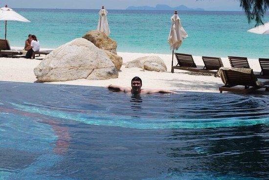 Idyllic Concept Resort : สระว่ายน้ำ