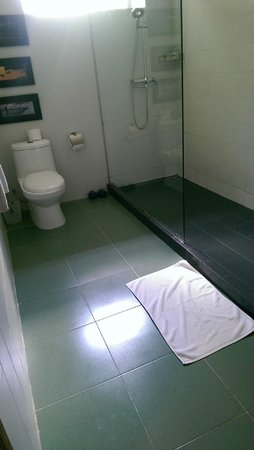 The Pavilion : toilet of twin room