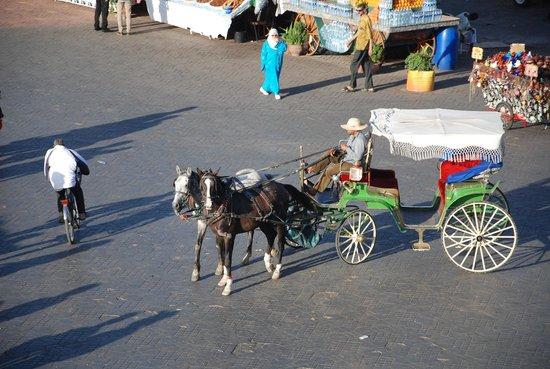 Suq von Marrakesch: horse and cart