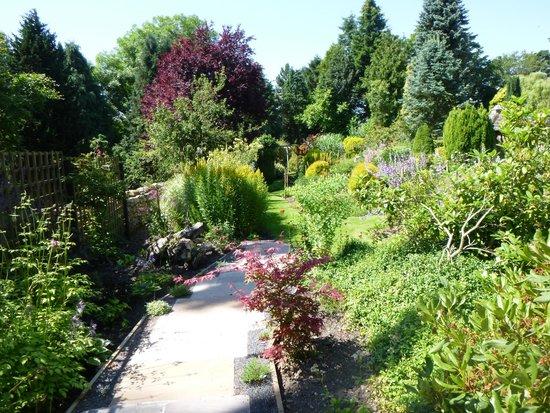 Stanton Hall Gardens and Nursery: Stanton Hall Garden - July 2014