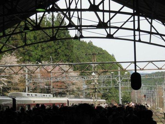 Mt. Yoshino: the crowded rail station
