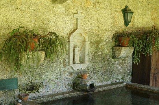 Quinta da Bouca d'Arques: q
