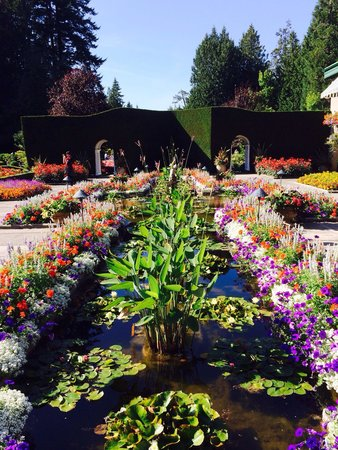 Butchart Gardens : Wow!
