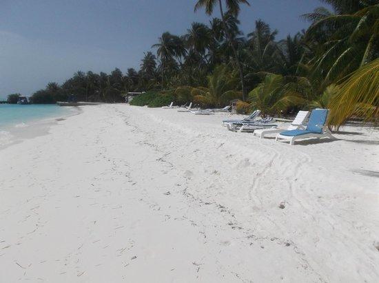 Meeru Island Resort & Spa : view of beach close to villa