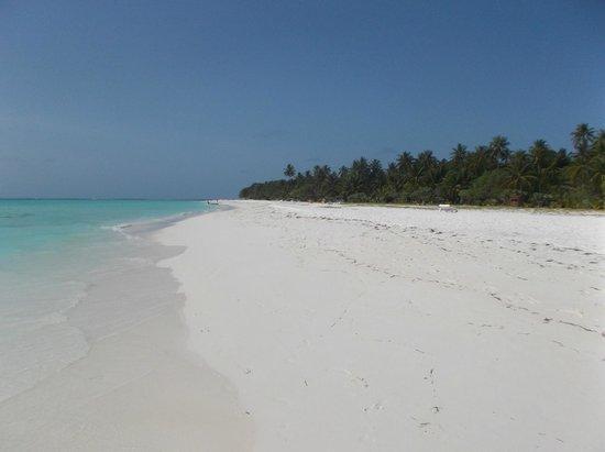 Meeru Island Resort & Spa : beach view