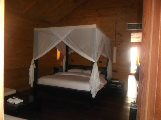 Meeru Island Resort & Spa : room