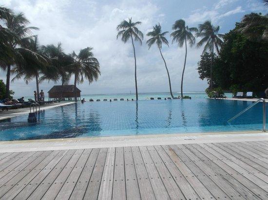 Meeru Island Resort & Spa : Adult only pool