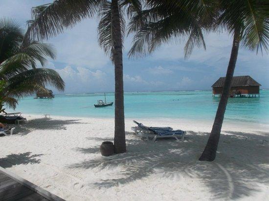 Meeru Island Resort & Spa : View from outside villa