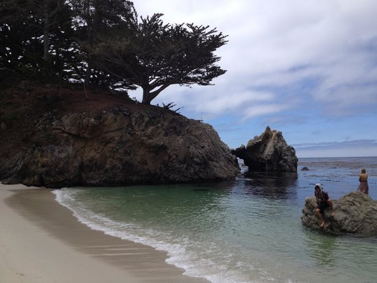 Point Lobos State Reserve: Worth taking the stairs down to the beach