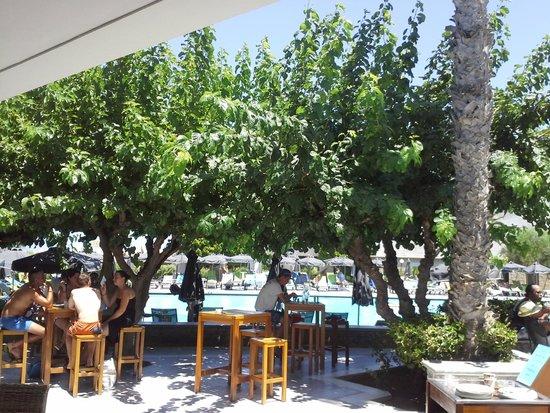 Club Marmara Marina Beach : vu du bar