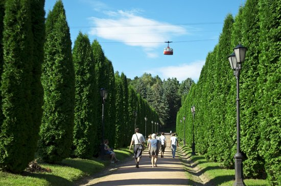 Plaza Sanatorium Kislovodsk: Курортный парк