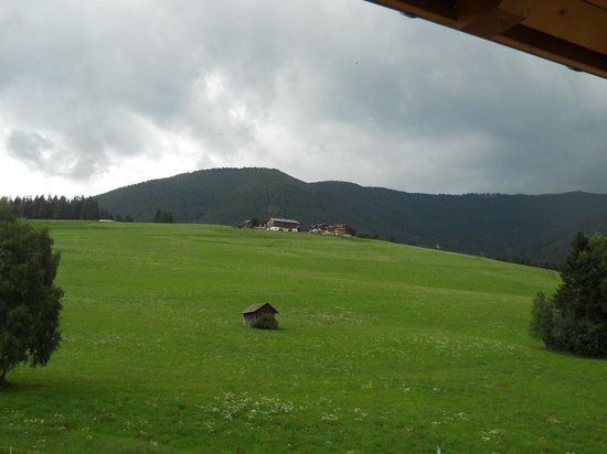 Hotel Alpen Tesitin: vista dalla suite